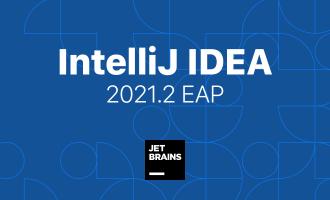 IntelliJ IDEA 2021.2 最新破解方法 永久破解 激活2099年 免费教程(亲测)
